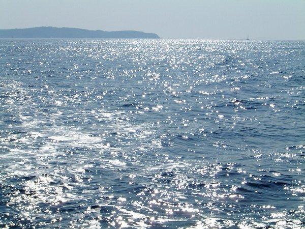 Galerija more